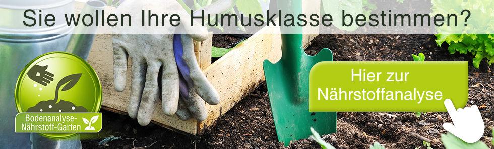 humusklasse-bestimmen