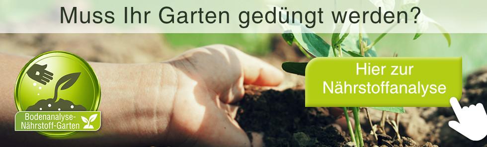 Muss Ihr Garten gedüngt werden?
