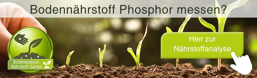 bodennaehrstoff-phosphor-messen