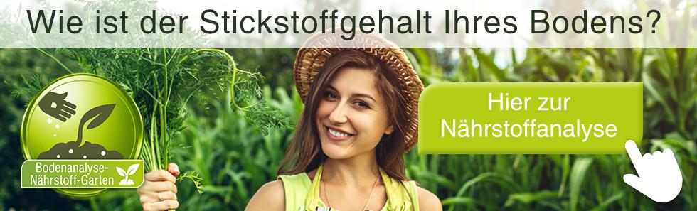 stickstoff-banner